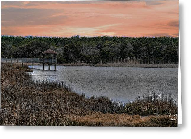 Sunset At The Beach Greeting Cards - Sunset at the Marsh Greeting Card by Joe Granita