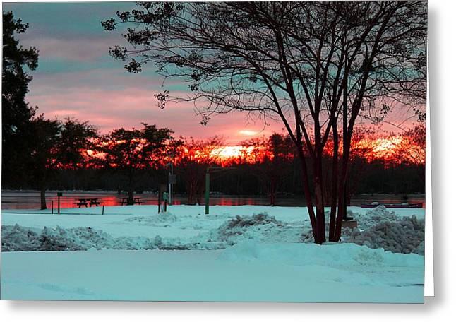 Sunset At The Park Greeting Card by Carolyn Ricks