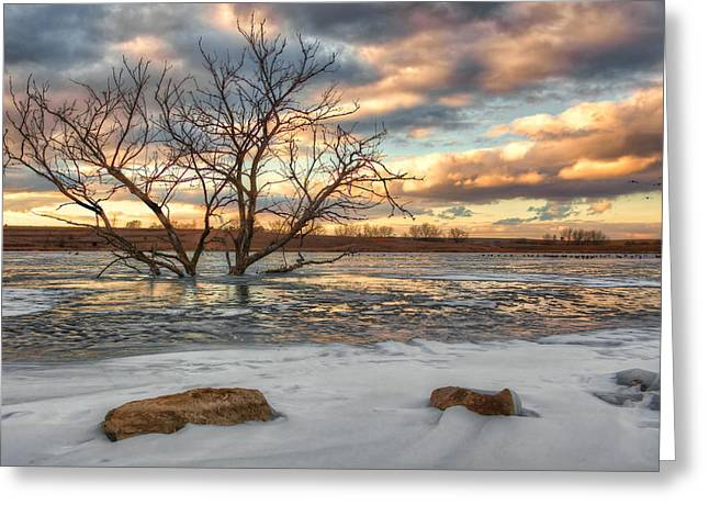 Snowy Evening Greeting Cards - Sunset at Walnut Lake Greeting Card by Nikolyn McDonald
