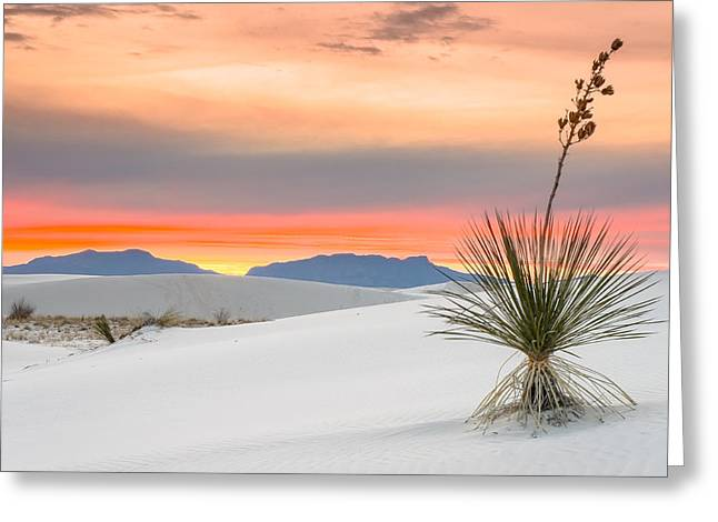 New Mexico Greeting Cards - Sunset at White Sands National Monument Greeting Card by Ellie Teramoto