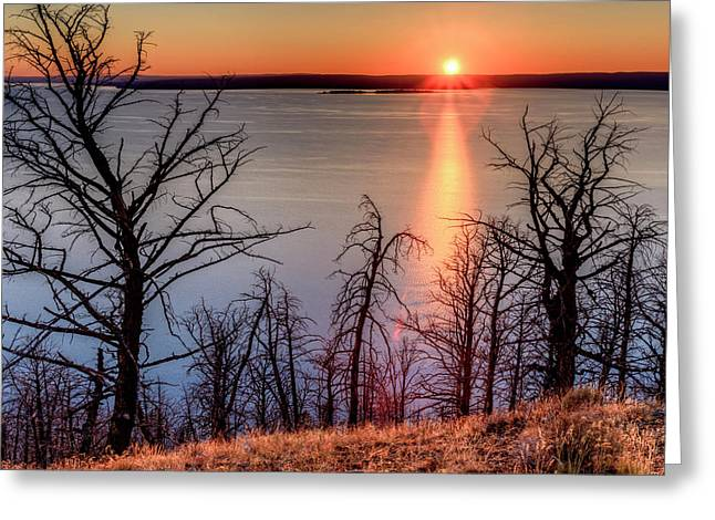 Sunset At Yellowstone Lake Greeting Card by Tom Norring