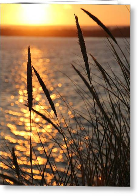 Surf City Greeting Cards - Sunset Greeting Card by Athena Mckinzie