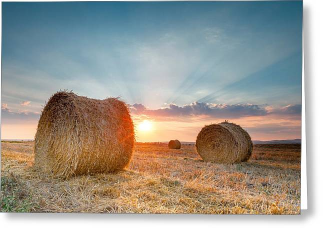 Hay Bales Greeting Cards - Sunset Bales Greeting Card by Evgeni Dinev