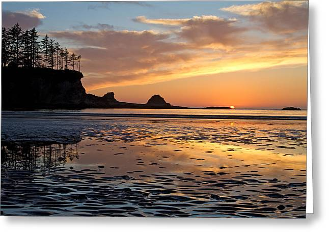 Sunset Bay State Park Greeting Cards - Sunset Bay Greeting Card by Patricia  Davidson
