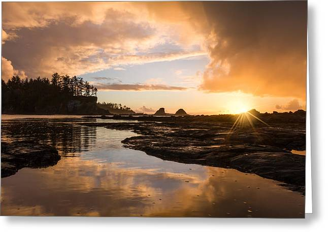 Sunset Bay State Park Greeting Cards - Sunset Bay Reflections Greeting Card by Patricia  Davidson