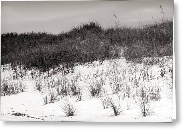 Sunset Posters Greeting Cards - Sunset Beach Sepia Dune mono Greeting Card by John Rizzuto