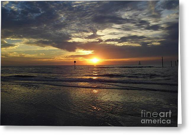 Reflection Of Sun In Clouds Greeting Cards - Sunset Beauty At Clearwater Greeting Card by D Hackett
