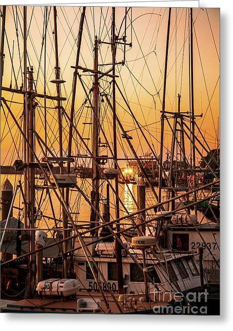 Sailboat Art Greeting Cards - Sunset Boat Masts at Dock Morro Bay Marina Fine Art Photography Print sale Greeting Card by Jerry Cowart