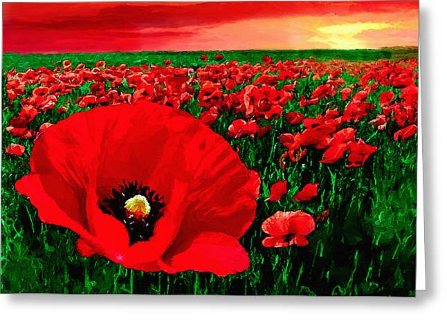 Recently Sold -  - Reserve Greeting Cards - Sunset California Poppy Preserve Greeting Card by  Bob and Nadine Johnston