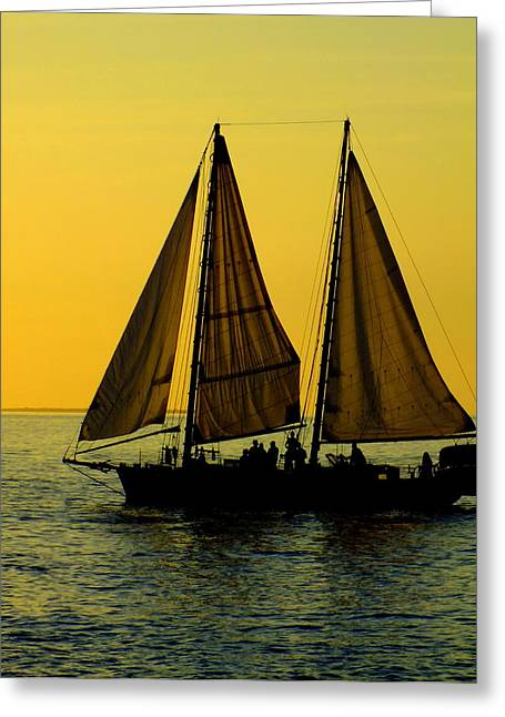 Yellow Sailboats Greeting Cards - Sunset Celebration Greeting Card by Karen Wiles