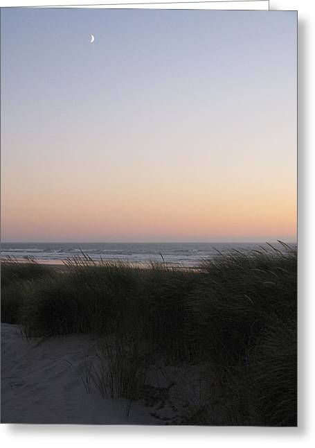 Moon Beach Greeting Cards - Sunset Colors Greeting Card by Tanya Shockman