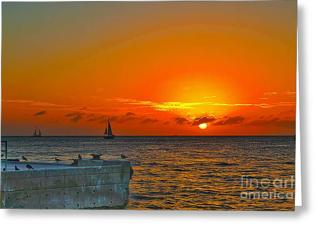Yellow Sailboats Greeting Cards - Sunset cruise - Key West 1 Greeting Card by Claudia Mottram