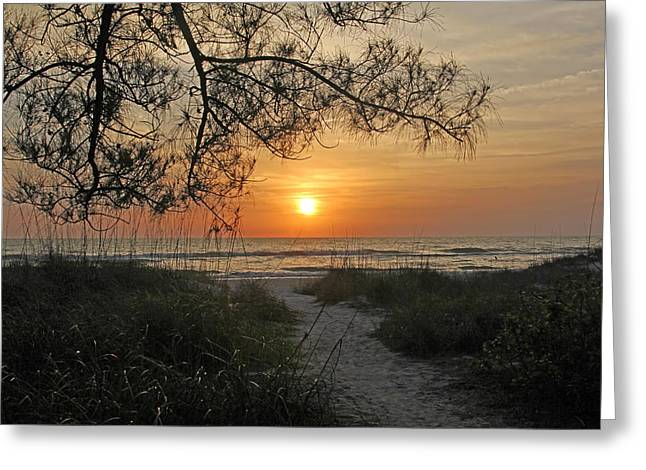 Ocean Art. Beach Decor Greeting Cards - Sunset - Down To The Sea Greeting Card by HH Photography