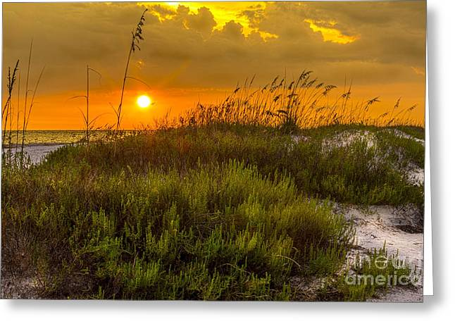 Coastal Dunes Greeting Cards - Sunset Dunes Greeting Card by Marvin Spates