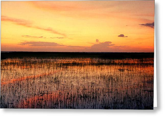 Chris Kusik Greeting Cards - Sunset. East Lake Toho. Greeting Card by Chris  Kusik