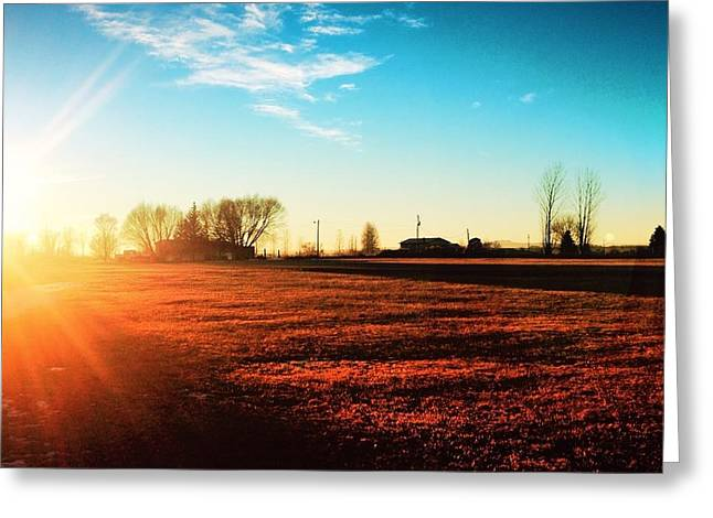 Lela Becker Greeting Cards - Sunset Fields Greeting Card by LeLa Becker