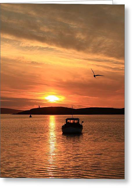Reflection Of Sun In Clouds Greeting Cards - Sunset Flight At Trondra Shetland Greeting Card by Anne Macdonald