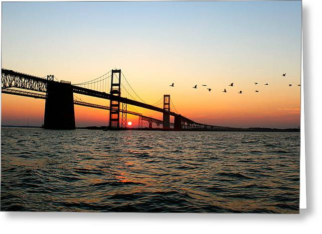 Chesapeake Bay Bridge Greeting Cards - Sunset Flight Greeting Card by Jennifer Casey