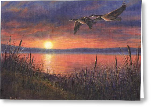 Wild Geese Greeting Cards - Sunset Flight Greeting Card by Kim Lockman