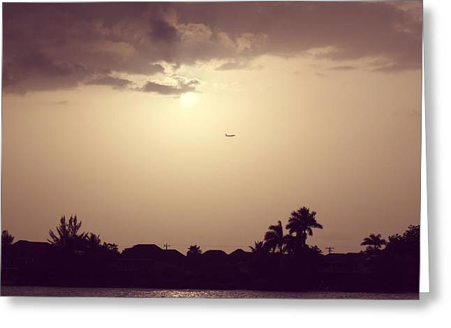 Martha Brae River Greeting Cards - Sunset Flight Greeting Card by Melanie Lankford Photography