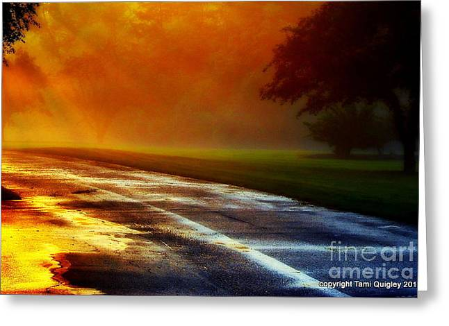 The Trees Greeting Cards - Sunset Glint In The Mist Greeting Card by Tami Quigley