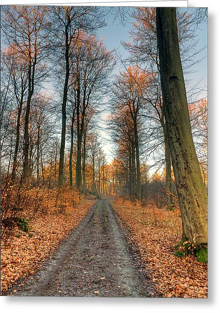 Road Greeting Cards - Sunset Glow Greeting Card by EXparte SE