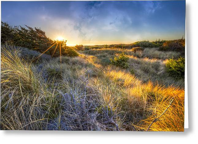Sanddunes Greeting Cards - Sunset Glow on the Dunes Greeting Card by Debra and Dave Vanderlaan
