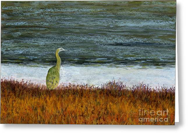 Great Birds Pastels Greeting Cards - Sunset Heron Greeting Card by Ginny Neece