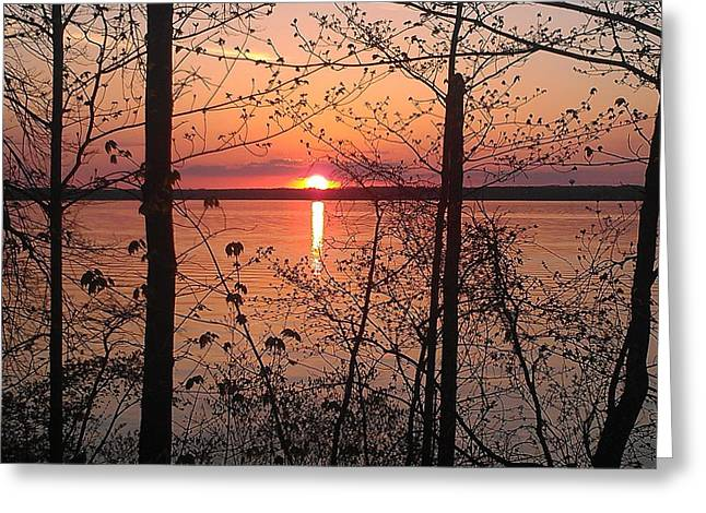 Lake Mendota Greeting Cards - Sunset Hide and Seek Greeting Card by T Cole