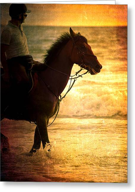 Wave Riders Greeting Cards - Sunset Horse Greeting Card by Loriental Photography