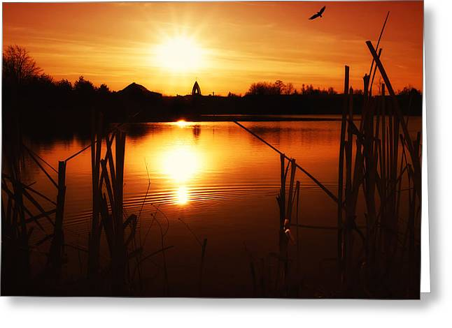Greeting Cards - Sunset Ii Greeting Card by Martin Dzurjanik