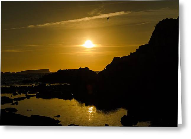 Consumerproduct Photographs Greeting Cards - Sunset in Baleal Beach Greeting Card by Alexandre Martins