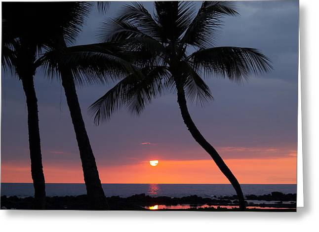 Tropical Photographs Photographs Greeting Cards - Sunset In Hawaii Greeting Card by Athala Carole Bruckner