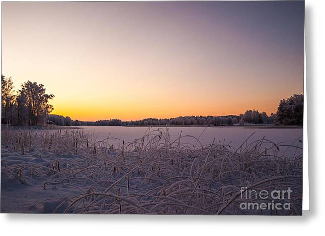 Snowy Evening Greeting Cards - Sunset in Lakeside Winterscape Greeting Card by Ismo Raisanen