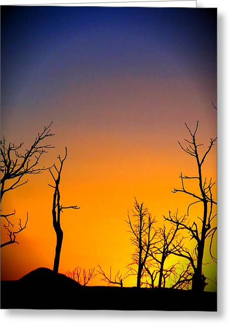 Peaceful Tree At Sunset Greeting Cards - Sunset In Mesa Verde Greeting Card by Dan Sproul