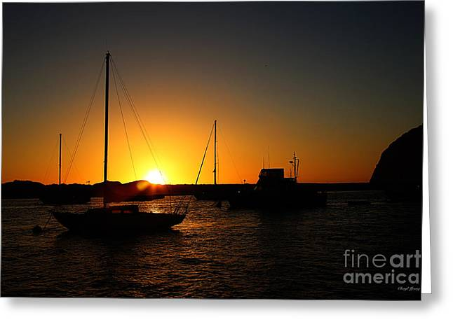 Small Towns Greeting Cards - Sunset in Morro Bay Greeting Card by Cheryl Young