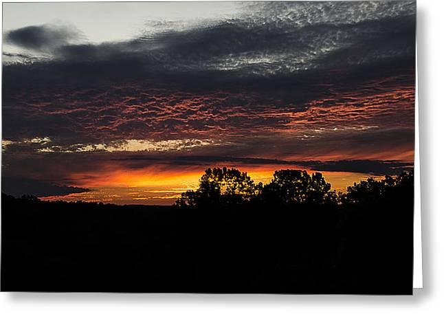 Dark Skies Pyrography Greeting Cards - Sunset in Orange Greeting Card by Shirley Tinkham