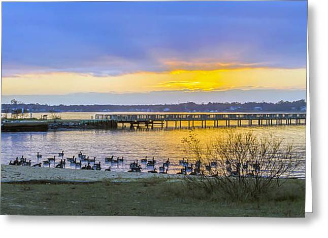 Fishing Creek Greeting Cards - Sunset In The Park Greeting Card by Brian Wallace