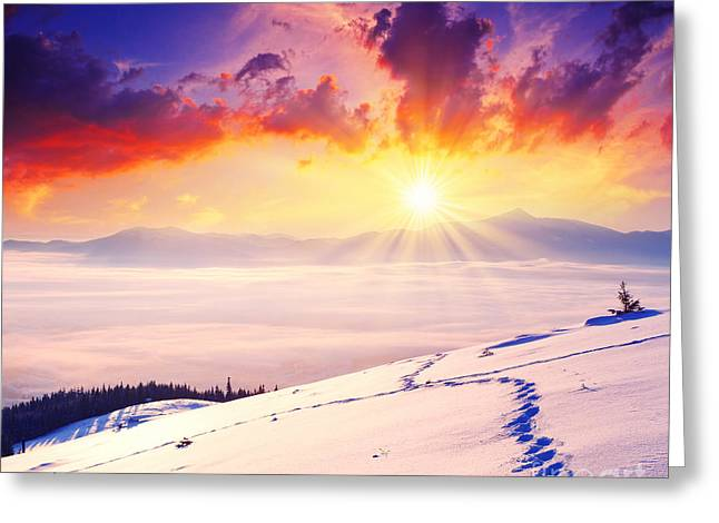 Desktop Pyrography Greeting Cards - Sunset in the Winter Greeting Card by Boon Mee