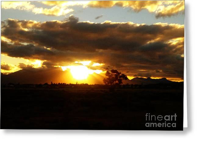 Shade Pyrography Greeting Cards - Sunset in Worcerster Greeting Card by Willinda Swart
