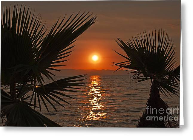 Sea Pyrography Greeting Cards - Sunset Greeting Card by Jelena Jovanovic