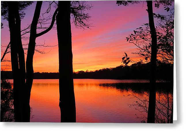 East Dennis Ma Greeting Cards - Sunset Lake Greeting Card by Dianne Cowen