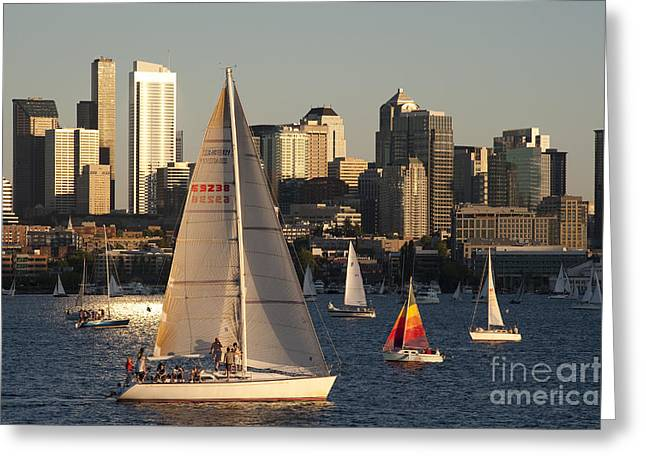 Blue Sailboats Greeting Cards - Sunset Lake Union Sailing Race Greeting Card by Jim Corwin