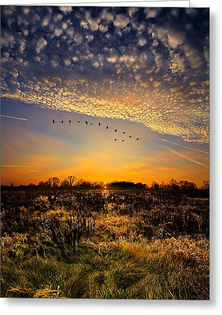Geographic Greeting Cards - Sunset Lullaby Greeting Card by Phil Koch