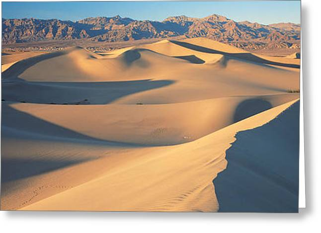 Visitors Greeting Cards - Sunset Mesquite Flat Dunes Death Valley Greeting Card by Panoramic Images