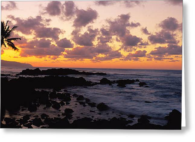 Tree In Rock Greeting Cards - Sunset North Shore, Oahu, Hawaii Greeting Card by Panoramic Images