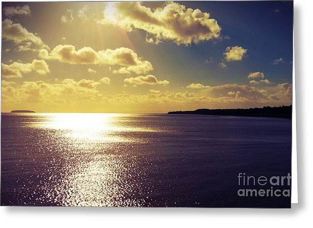 Maia Greeting Cards - Sunset Number 1 Greeting Card by Maia Newley