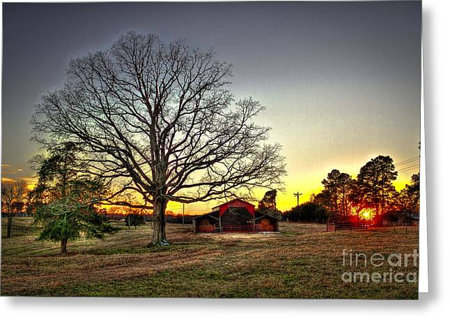 Southern Homes Greeting Cards - Sunset Oak Friends Greeting Card by Reid Callaway