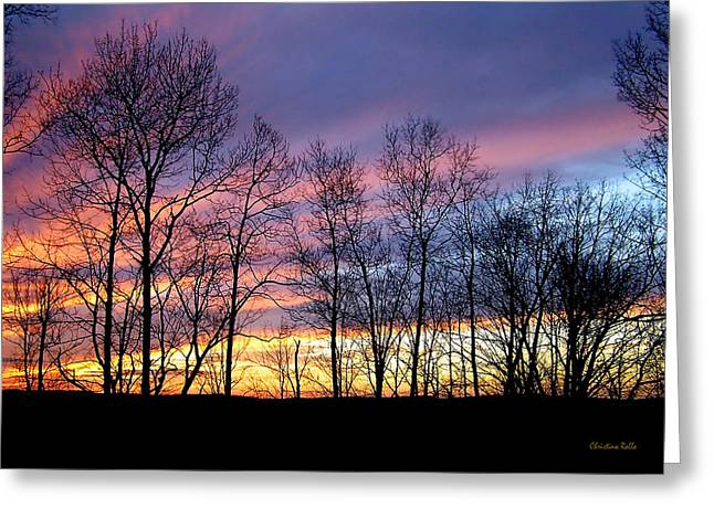 Sunset of the Century Greeting Card by Christina Rollo