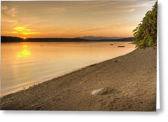 Sunset Olympic Peninsula, Washington Greeting Card by Tom Norring
